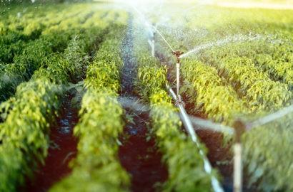 A importância da Outorga de uso dos Recursos Hídricos
