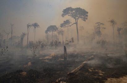 Mudanças climáticas: as preocupantes previsões para a América do Sul no IPCC